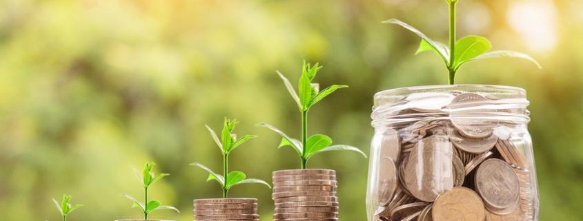 Geldstapel aus denen Pflanzen wachsen